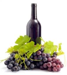 A rezveratrol elsődleges étrendi forrása a szőlő és a vörösbor