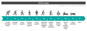 Az EDSS-skála pontszámai