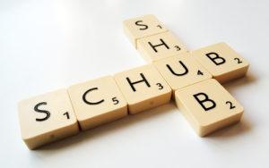 shub és schub szó Scrabble kockákból kirakva