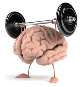 súlyzót emelgető agy