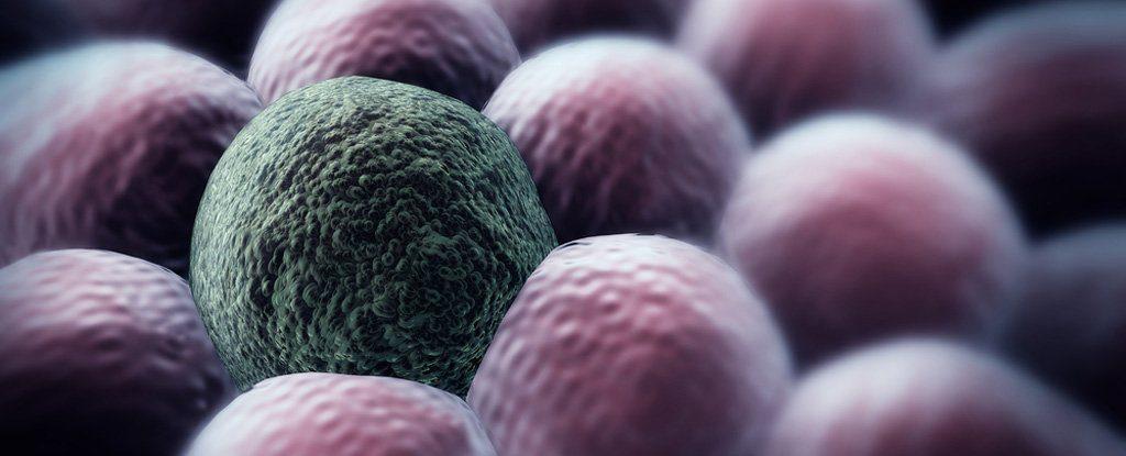 Kisebb eséllyel lesznek rákosak a sclerosis multiplex betegek