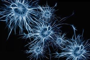 A neuroplaszticitás szerepe a gyógyulásban