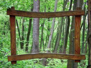 erdőrészlet fa keretben