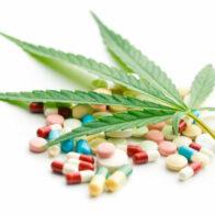 A kannabisz csökkenti az SM-ben alkalmazott tünetkezelő gyógyszerek használatát